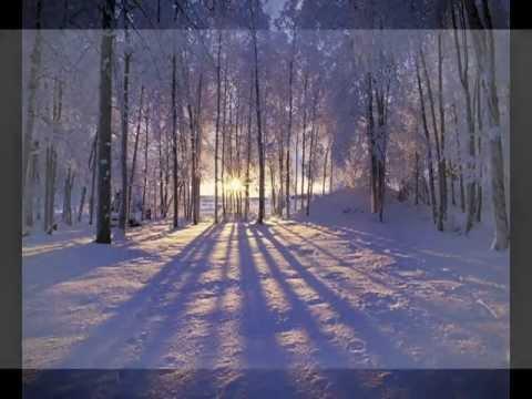 Own accompaniment : Franz Schubert.Winterreise.D 911 Gute Nacht.