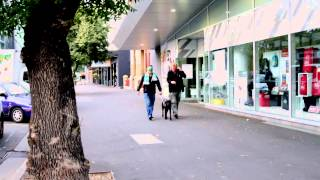 Tim Ginever Takes A Walk Blindfolded With An Rsb Guide Dog