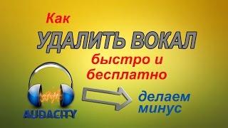 Как УДАЛИТЬ ВОКАЛ из песни за 5 минут в программе Audacity