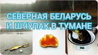 Щука в тумане или зима которой не было Рыбалка в северной Беларуси 19 20гг жерлицы