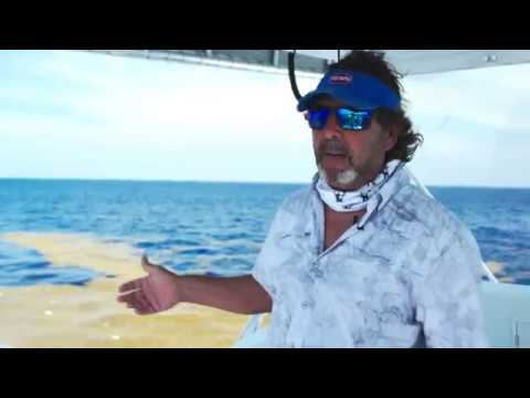 Top 3 Mahi-Mahi Fishing Mistakes (With Peter Miller & Captain Q)