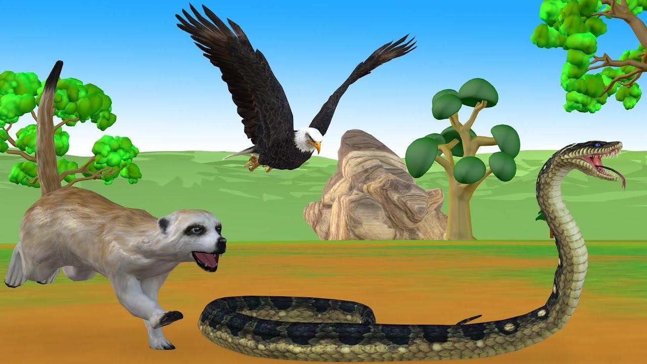 ईगल सांप फंदा और नेवला eagle snake trap नैतिक कहानी Hindi kahani Panchatantra moral Stories In Hindi
