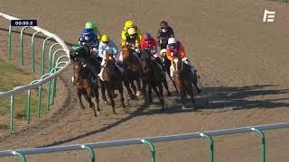 Vidéo de la course PMU PRIX DE LA MOTTE LOUVET