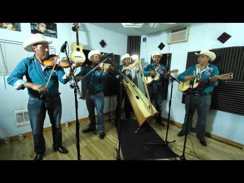 Conjunto De Arpa Grande (La Vida Del Hombre) Los Rayitos De Michoacan