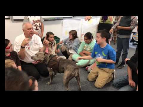 Molly Pit Bull Therapy Dog at Four Peaks Elementary School