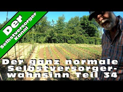 Der ganz normale Selbstversorgerwahnsinn Teil 34 Gartenrundgang