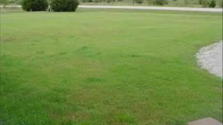 Planting Rye Grass