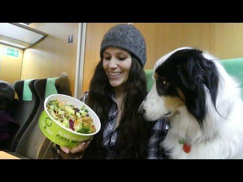 Traveling To Sweden | Raw Vegan Vlog