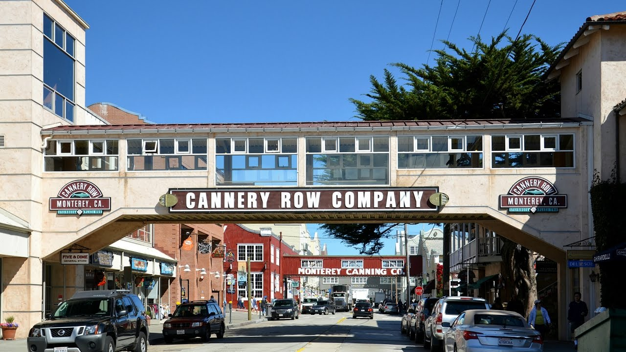good people in cannery row ''cannery row,'' david s ward's screen adaptation of the late john steinbeck's novellas ''cannery row'' and ''sweet thursday,'' is the project from which raquel welch was sacked early in the.