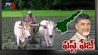 A P Government Going To Release First term Runa Mafi : TV5 News