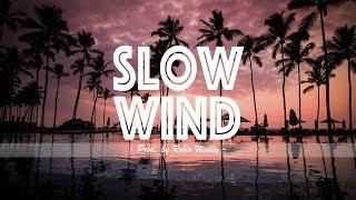 "Dancehall Afro R&B Beat Instrumental 2018 x ""Slow Wind"" (Stefflon Don x Wiz Kid Type Beat 2018)"