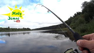 Здорово когда УДОЧКА В ДУГУ клюёт ловится РЫБАЛКА на отводной Применяем тактику ловли