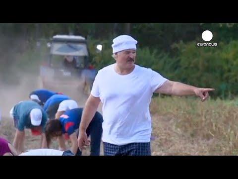 Belarus President Lukashenko harvests potatoes in his backyard