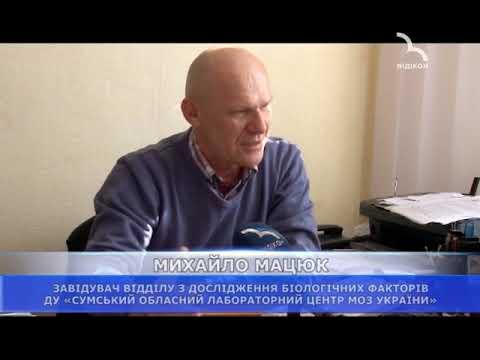 ТРК ВІДІКОН: У Сумській області на Охтирщині зафіксовано випадок захворювання на туляремію