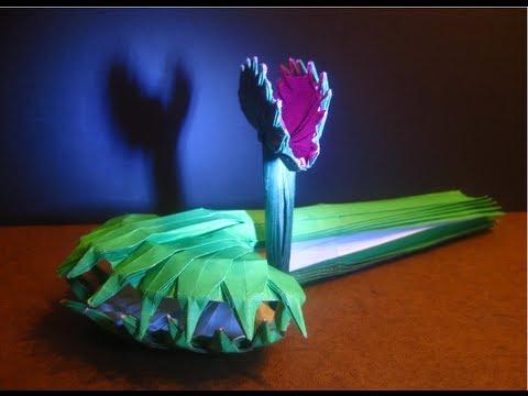 plante carnivore origami