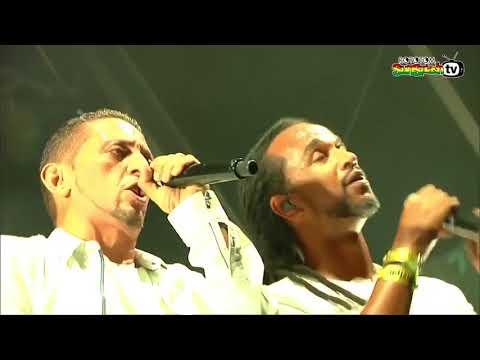 DUB INC    Live Rototom Sunsplash 2016 Full Concert Mp3