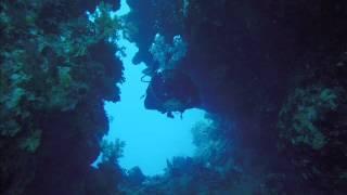 Sumergido en el Mar Rojo