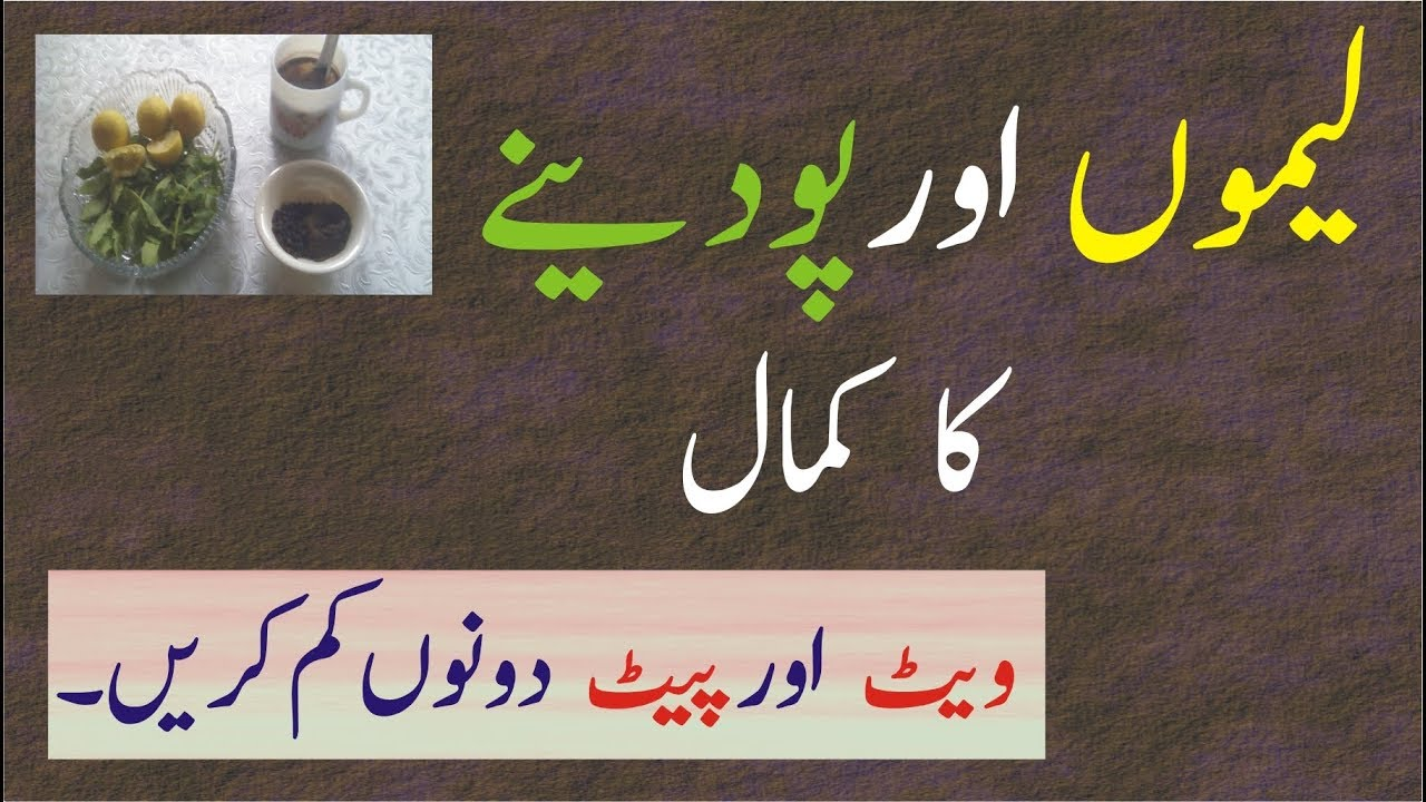 fogyás totka urdu nyelven