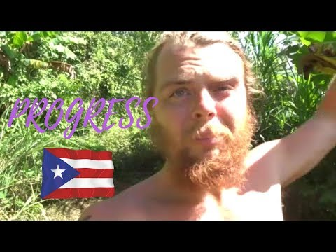 Working on the Farm and Progress in Puerto Rico || Vlog #44 of 365