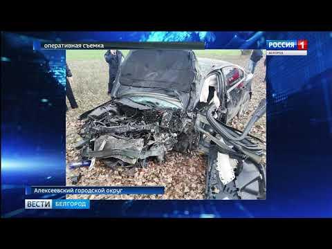 В ДТП в Алексеевском городском округе погибли два человека