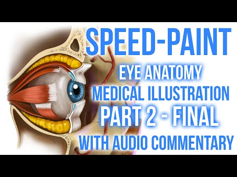 Speed-Paint tutorial: Medical eye part 2