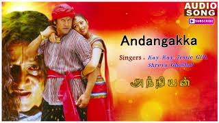 Andangkaka Kondakari Song | Anniyan songs | Anniyan | Shankar Movie | Vikram songs | Andangkaka song
