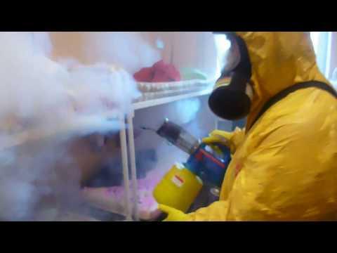 Уничтожение клопов горячим и холодным туманом