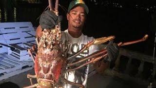 Monster Lobster Raksasa Yang Berumur Sekitar 70 Tahun Tertangkap