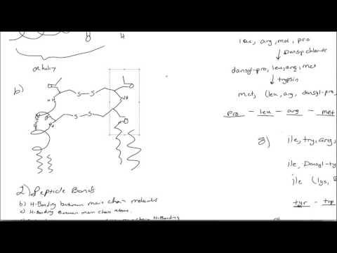 Biochemistry: Protein structure (6)