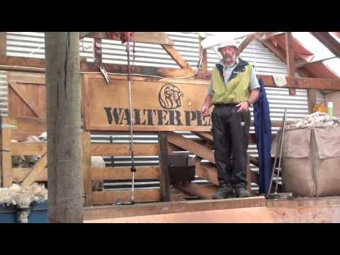 WALTER PEAK SHEEP STATION