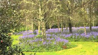 Woodbridge Garden Coatesville
