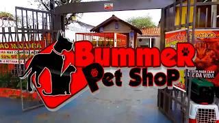 VT BUMMER PET SHOP