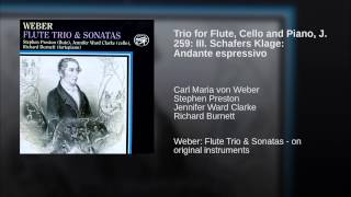 Trio for Flute, Cello and Piano, J. 259: III. Schafers Klage: Andante espressivo