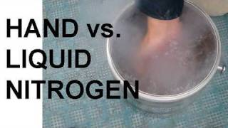 Hand vs. Liquid Nitrogen and the Leidenfrost Effect thumbnail