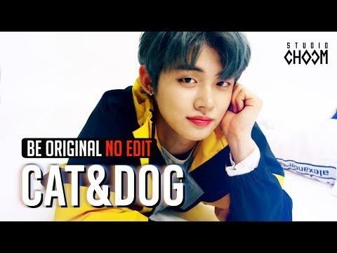 (no-edit)-txt(투모로우바이투게더)-'cat-&-dog'-4k-l-[be-original]