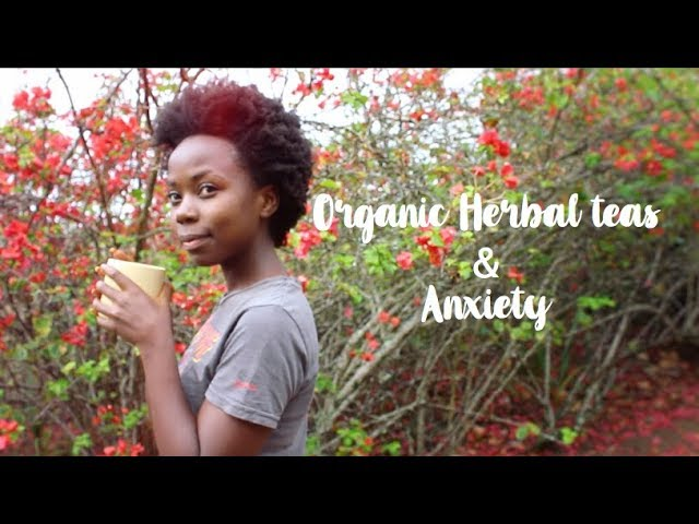 Herbal teas and dealing with anxiety // Holistic Living