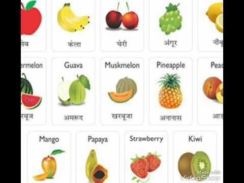 Fruit Names Chart English To Hindi Youtube