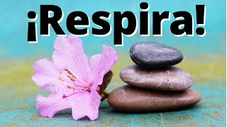 Mindfulness: Conciencia en la Respiración.m4v