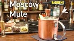 Moscow Mule - Vodka Longdrink selber mixen - Schüttelschule by Banneke