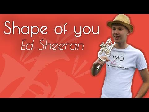 Ed Sheeran - Shape of you (TMO Cover)