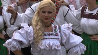 Sanziana Toader  -  Cetera cu strunile HD