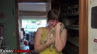 Any Girl is Happying When Receive: Puppy Surprise Videos Compilation 2017
