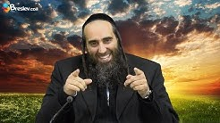 Nachgiebig | Rabbiner David Kraus