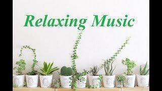 朝カフェ音楽・BGM・ピアノとギターの癒し&リラックスカフェミュージック(Relaxation Music)