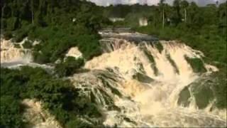 Documentaire - Les heros de la nature