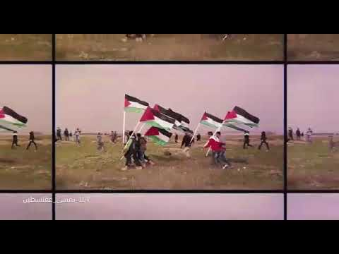 88c229991 يلا امشو معانا على فلسطين - YouTube
