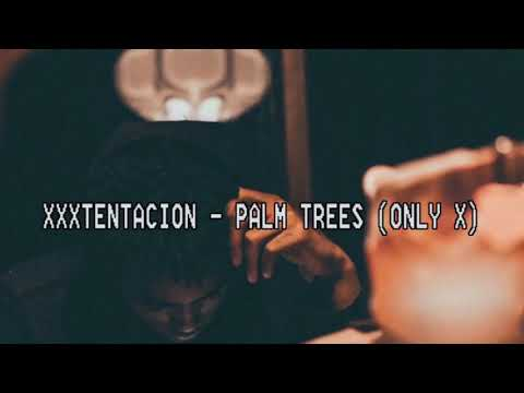 XXXTENTACION - PALM TREES (Lyric Video)