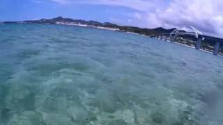 沖縄県本島から車で行ける離島 瀬底島にあるアンチ浜でシュノーケル ブ...