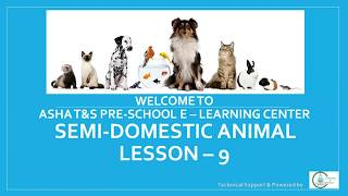 Semi Domestic Animal | Lesson 9 | Preschool E-Learning | Kids Education | Nursery Level | Zoology