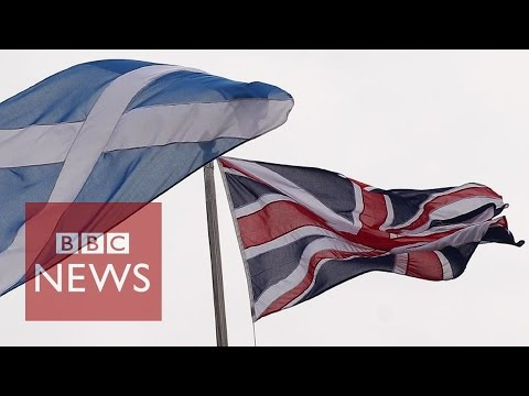 Scotland's global citizens to decide the independence referendum - BBC News